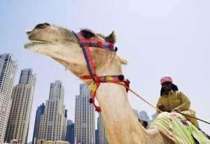 Medical Tourism Middle East, a Region on the Rise