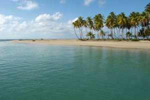 Special Series: Health and Travel Information for Travelers to Dominican Republic